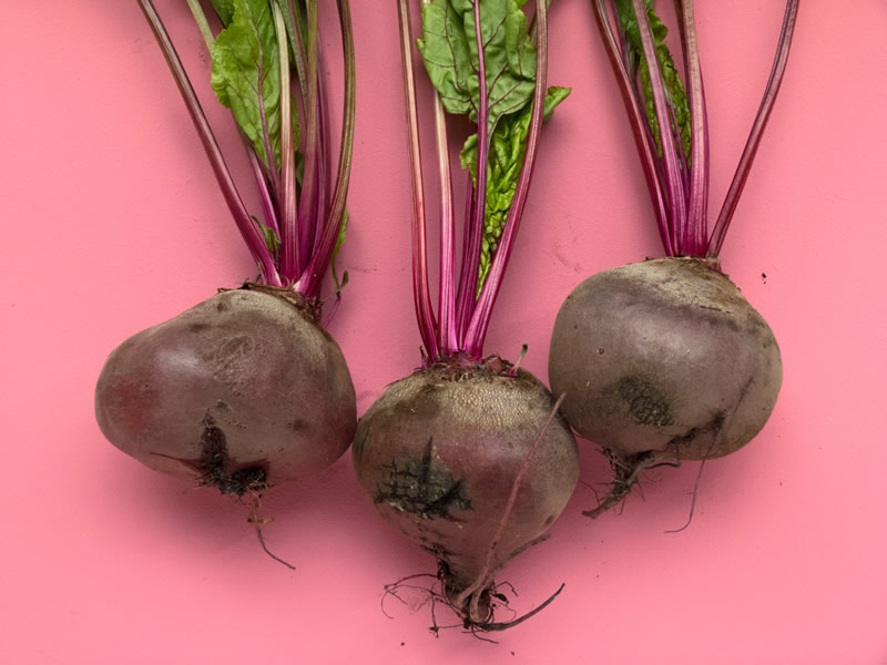 The Beautiful Beetroot!!